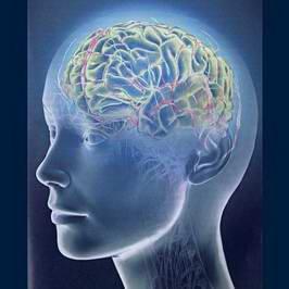 Повышение уровня частотности мозга