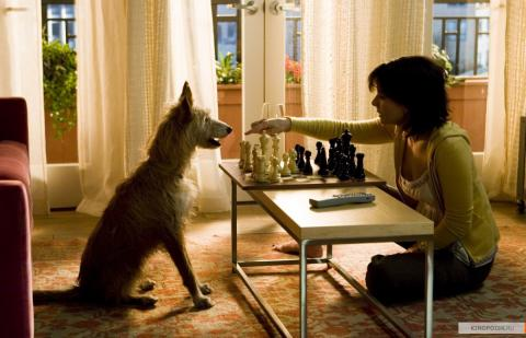 Кадр из фильма Дом у озера, 2006 год (08)