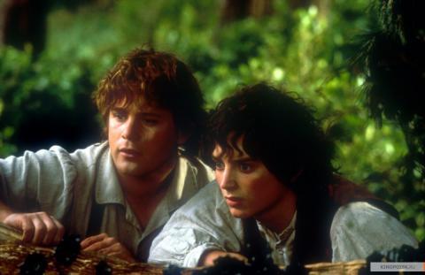 Кадр из фильма Властелин колец: Братство кольца, 2001 год (11)